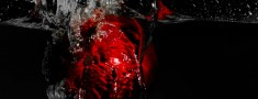 portfolio-Pomegranate-splash-of-water